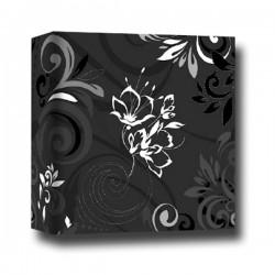Album Umbria nero