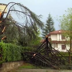 Foto di danni per assicurazione